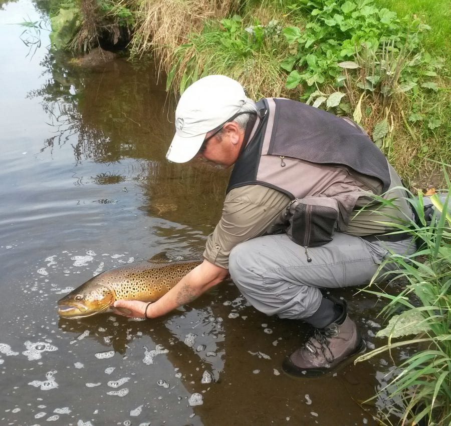 Migratory Monster Trout Of Lough Neagh, Northern Ireland by Christopher Bryant