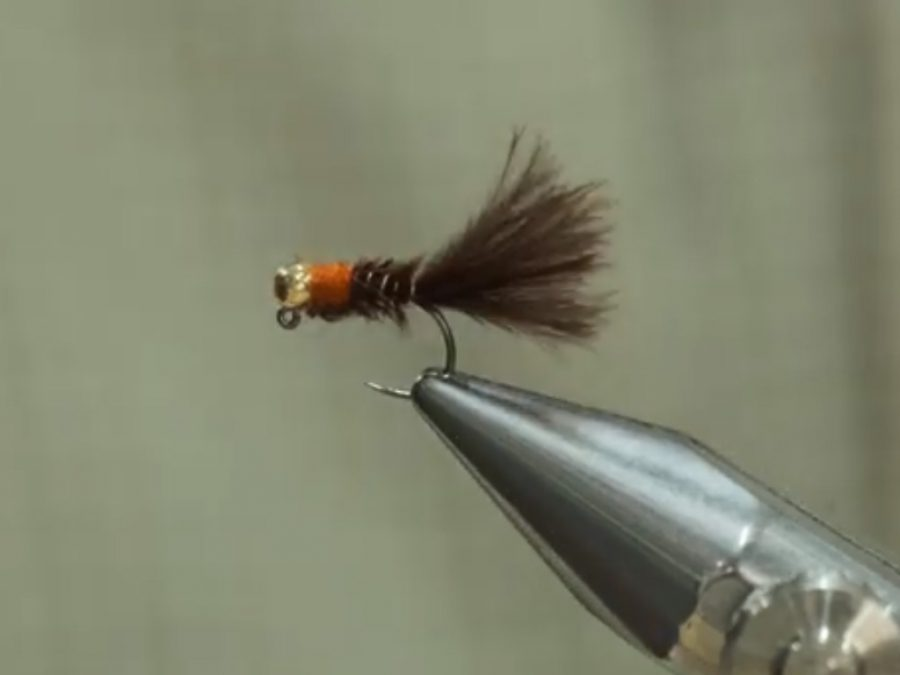 June Bug – tied by Keegan Kennedy
